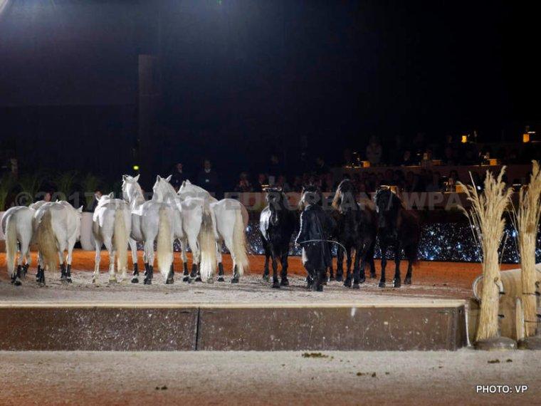 Lorenzo, Le Cavalier volant et les Tambours du Bronx à la Nuit du Cheval de Paris