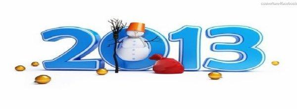 je vous souhaite une bonne et heureuse annéé 2013 et surtout la santé