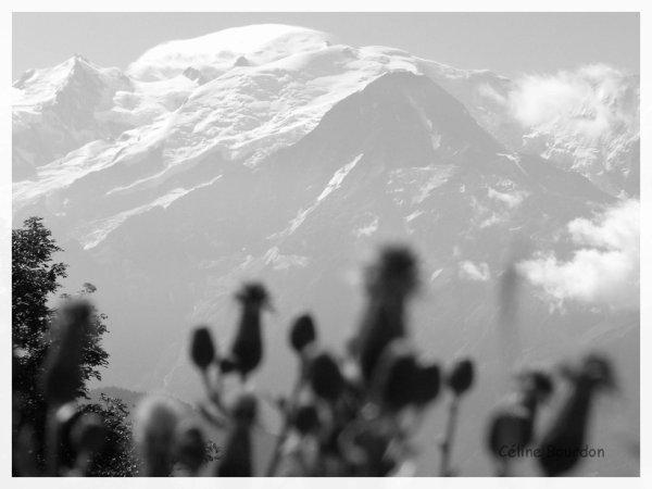 Chamonix - Le Mont Blanc