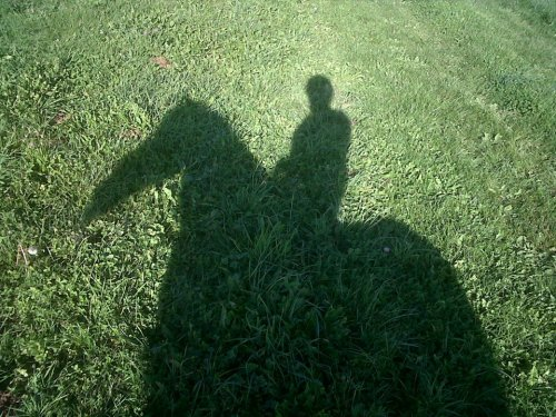 Un poney pas comme les autres, à mes yeux ♥