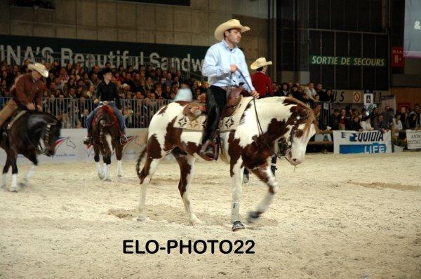 Salon du cheval Paris2011