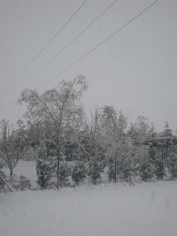 la belle neige