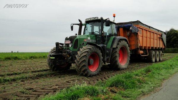 Arrachage de carottes 2014