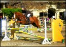 Photo de Trocvend-Equitation