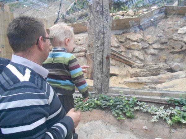 La serre zoologique biotropica le 1er novembre 2012