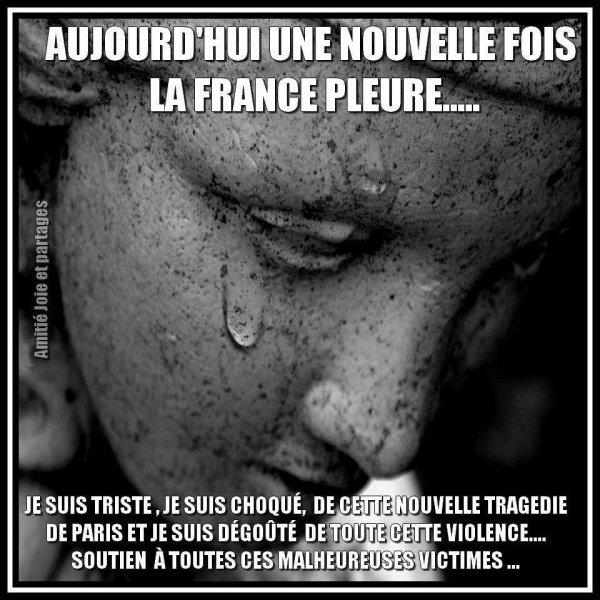 solidarité avec le peuple française