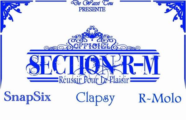 Réussir Pour Le Plaisir / Section R-M - C'était Ecrit (2011)