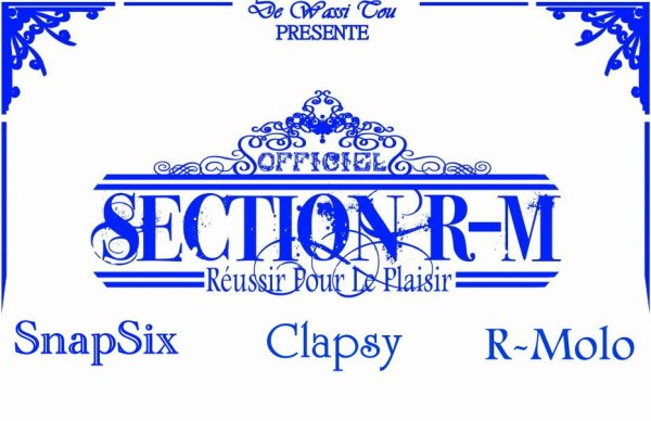 Réussir Pour Le Plaisir / Section R-M - Réussir Pour Le Plaisir (2011)