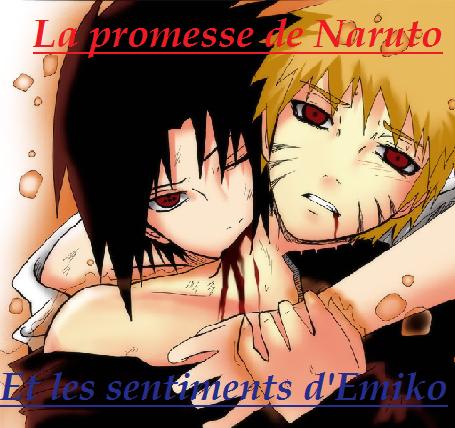 Chapitre 2 : La promesse de Naruto et les sentiments d'Emiko