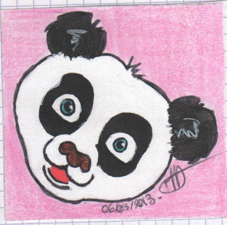 Petit Panda Mes Dessins