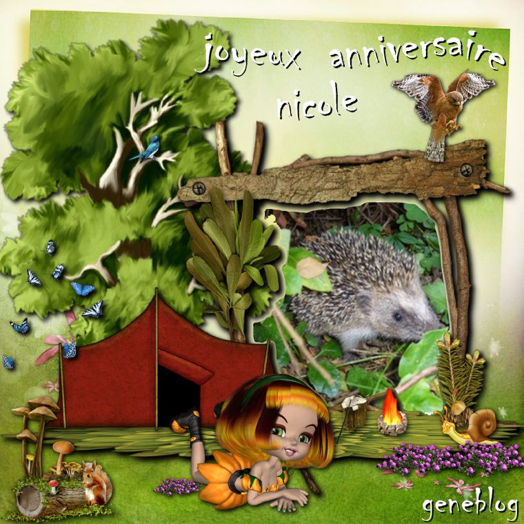 Joyeux Anniversaire A Mon Amie Nicole Gros Bisous Nos