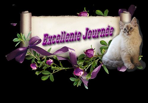 BONJOUR A TOUS ♥ PASSER UNE EXCELLENTE JOURNEE ♥ BISOUS ♥