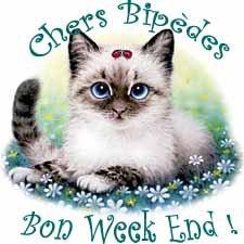 BON WEEK-END A TOUS * BISOUS *