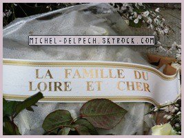Michel Delpech (1946-2016) Père Lachaise - 49ème division