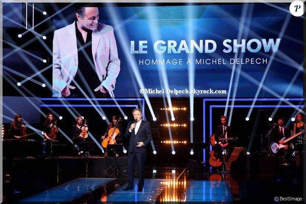 """Michel Delpech : Sa veuve et ses amis artistes réunis pour son """"Grand Show"""""""