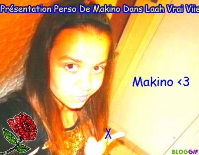 Présentation perso de Makino