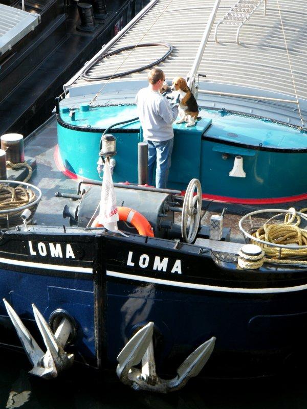 "LOMA (B) Montignies s/Sambre (Deruelle-Labrune) -Spits ""VAN PRAET 1952"""