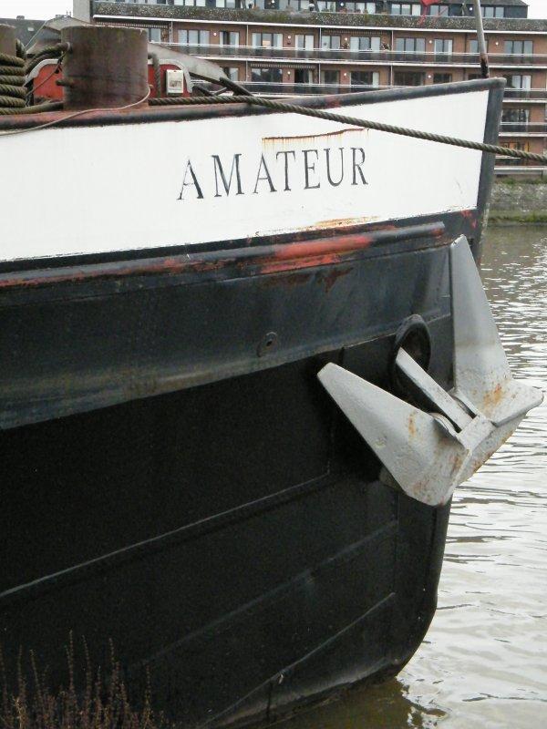 AMATEUR (B) prend racine à Namur