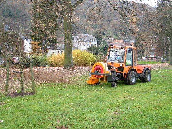Namur - Parc de La Plante - Après la chute des dernières feuilles, un ultime petit coup de souffleuse ...avant les premières neiges annoncées.