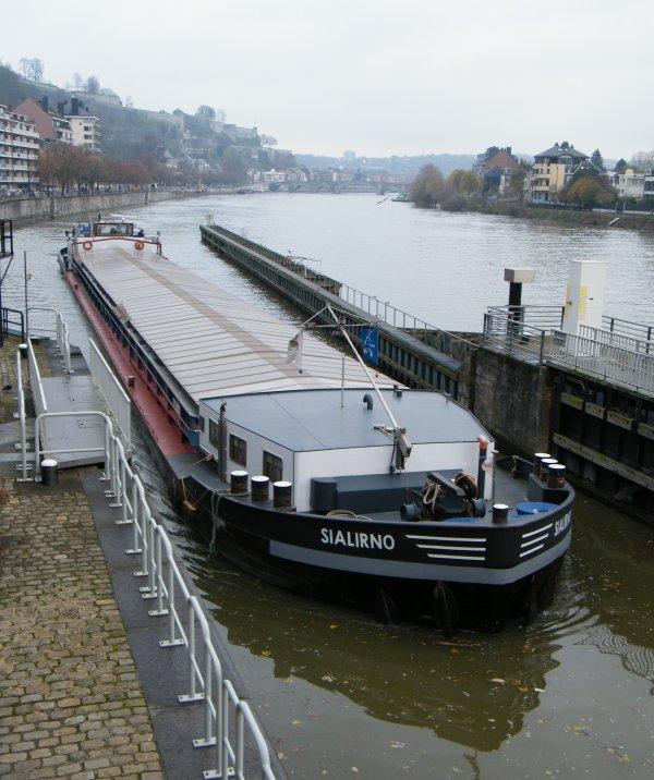 SIALIRNO (B) Antwerpen - GT.1439 - 82,00 m. 8,20 m.