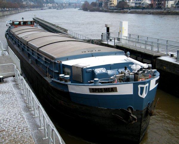 SPES MEA (B) GT.614 - 50,00 m.  6,60 m.