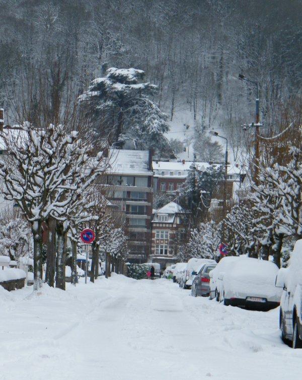 NAMUR sous plus de 22cm de neige ce dimanche 19 décembre 2010 à 18h. (225mm de neige)