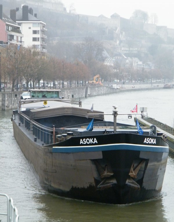 ASOKA (B) Lommel - GT.1214 - 80,00 m. 8,20 m.