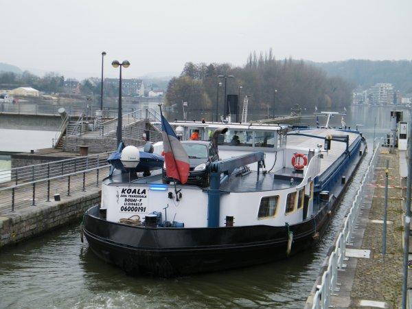 KOALA (F) Douai - GT.1505 - 85,00 m. 9,50 m.
