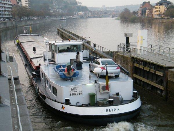RAYPA (B) Brugge (R.DEWET) - GT.1082 - 80,00 m. 8,24 m.