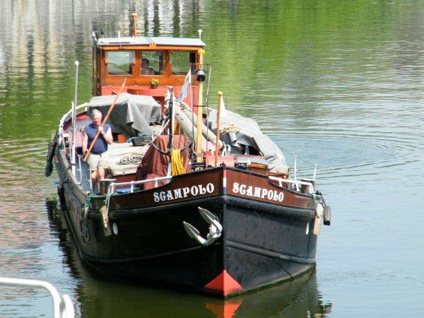 SCAMPOLO (NL)