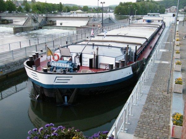 ADVERSA (B) Bléharies - GT.1597 - 90,00 m. 9,50 m. chargé de 1150t. de colza (Givet>Antwerpen)