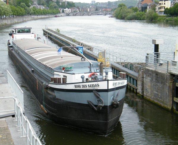 ROSE DES SABLES (B) Brugge - GT.554 - 57,00 m. 5,70 m.
