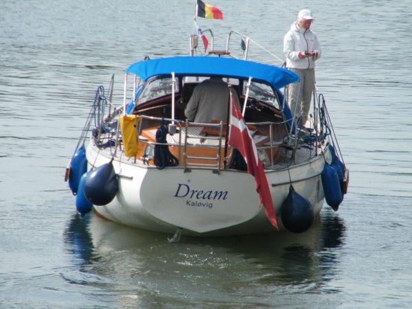DREAM (DK)