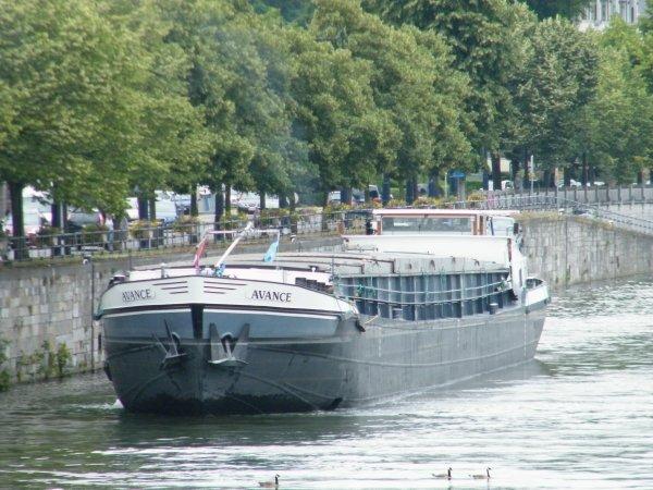 BARAKA (B) , AVANCE (NL), DESAFIO (NL)