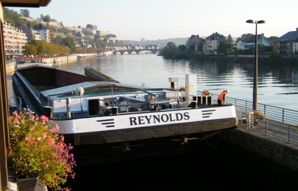 REYNOLDS (B), GOVERLINE (NL)