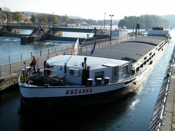 SAKETA (B), SUZANNA (NL), TATIANA (B)... 3 nouveaux sur la Haute Meuse ;)