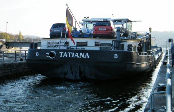 TATIANA (B) Herstal - (Denis CATOIR-TABURIAUX)  GT.1826 - 86,00 m. 10,00 m.