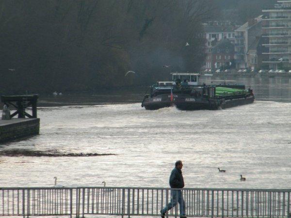 Haute Meuse, débit décroissant mais toujours en pré-alerte ce lundi 19 décembre à 6h00 (630 m³/sec.) - ALBIS (CZ) Decin
