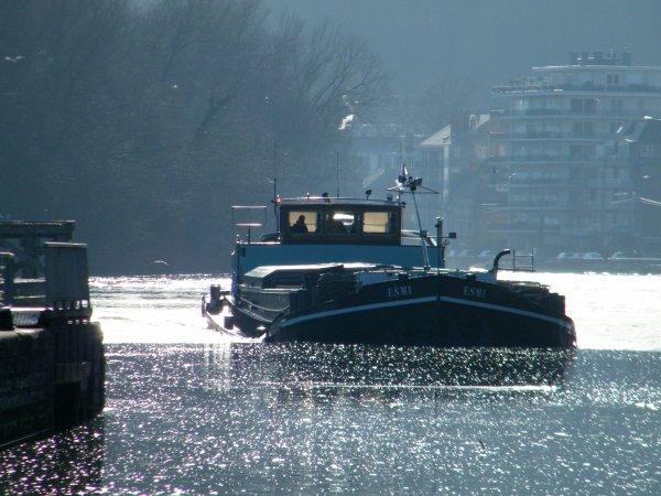 L'hiver se montre enfin avec des T° négatives, les vannes descendent et l'on retrouve un trafic normal pour la saison...ESMI (B), RIVAL(NL), SABRINA (B), ...