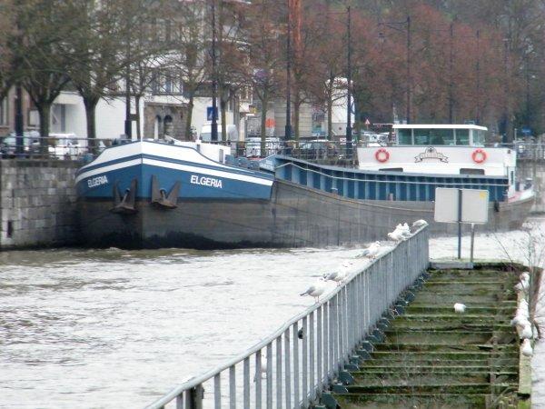 OLAKO (B), PADOVA (B), ELGERIA (NL), RIVAL (NL), RUUB (NL) 1er plaisancier de 2012...