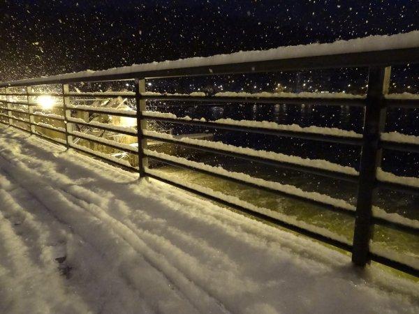 Journée hivernale,  froid nocturne (T°-12), soleil matinal avant le retour de la neige... MIA (S), AUDAX (B), VERA (CZ), LA PROVIDENCE (NL),...