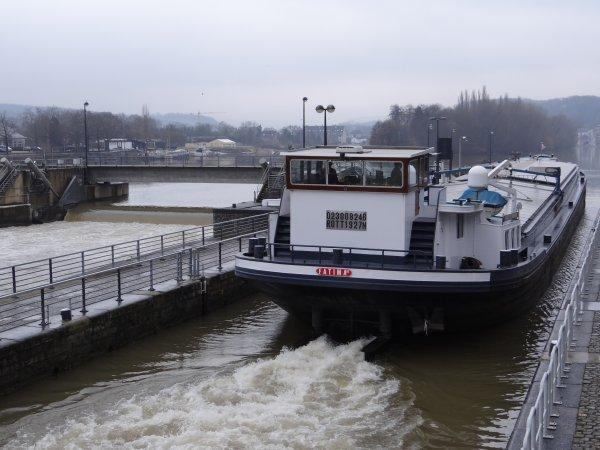 Trafic matinal de ce vendredi 17 février à l'entrée-sortie de la Haute Meuse. FATIMA II (NL), ASTRID (NL), PEGASE (B), MONITOR (B)