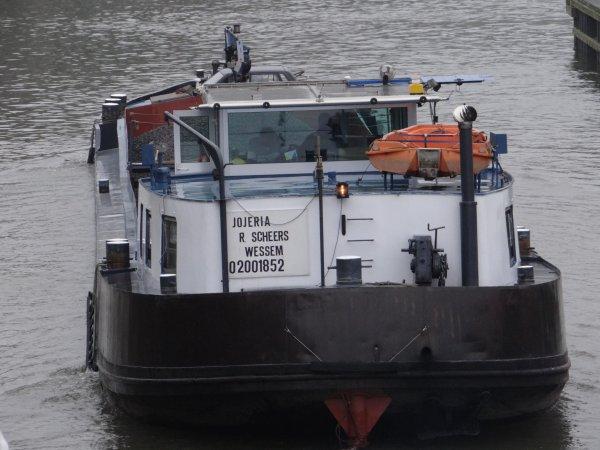 JOJERIA (NL) Wessem - GT.380 - 50,00 m. 6,30 m. -  Relevés mensuels, les chiffres pour février depuis 2001...