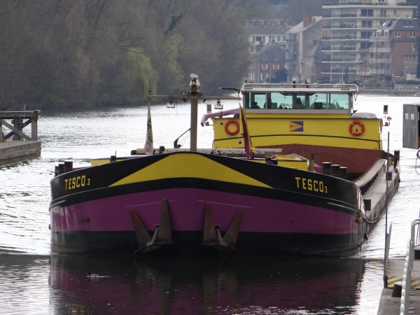 TESCO 3 (NL) Amsterdam  - MS ELISABETH (L) Mertert