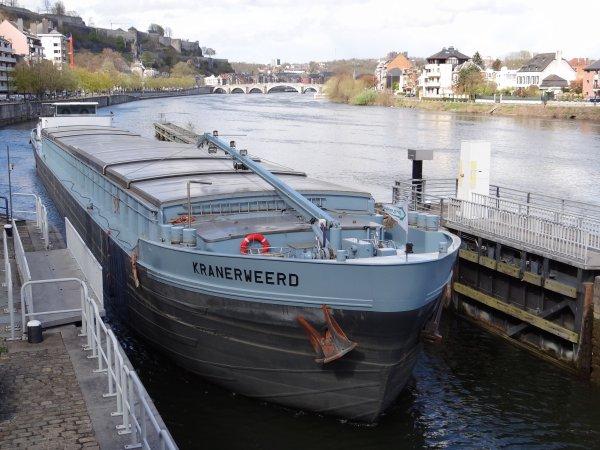 LAZY JANE (?), HARMONIE II (GB), KRANERWEERD (NL)