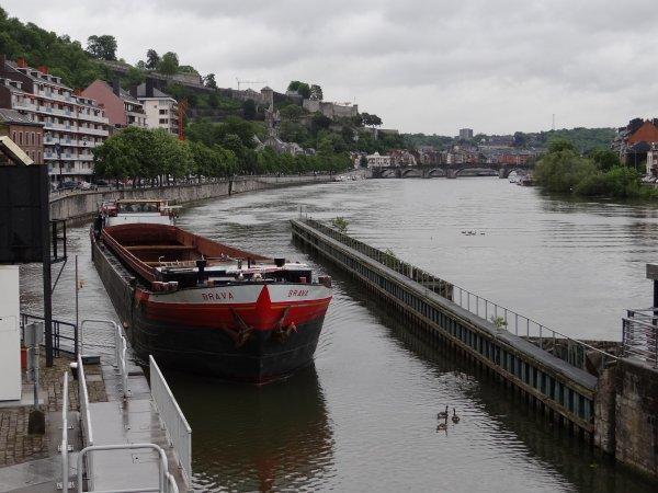 MORSCHE KUGEL (D), BRAVA (NL), BEL-AMI (B), parmi les 27 bateaux du jour.