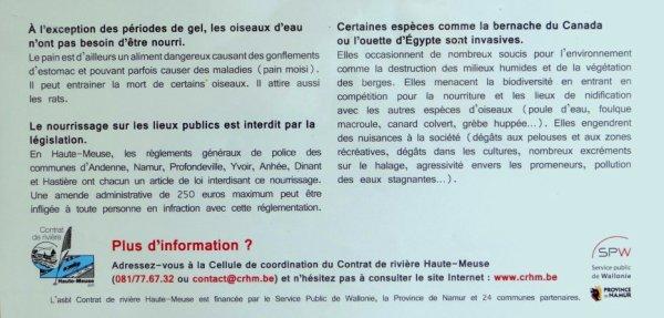 Campagne de sensibilisation contre le nourrissage des oiseaux d'eau - Inauguration du réseau de panneaux d'information le long du halage mosan, le 14/08/2012 à La Plante - CRHM.