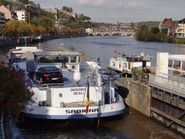 Echantillon du 10 octobre 2012... HUMANITE (L), SEQUENS (B), BARAKA (B), HJIRRE (NL), CAMILLE (NL), BIESBOSCH (USA), parmi les 25 bateaux du jour...