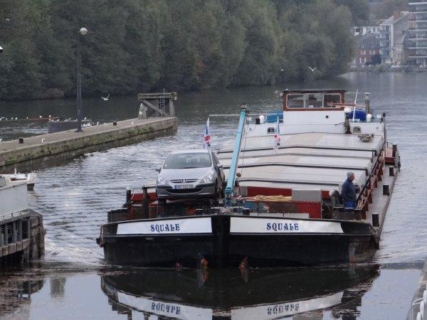 A l'approche de la Toussaint, trafic dans la moyenne saisonnière (10 à 15) sur la Haute Meuse... - RUSTICA (NL), LAMBADA (B), SQUALE (F), DC MOSA 1 (NL),   parmi les 14 bateaux de ce 30 octobre 2012.