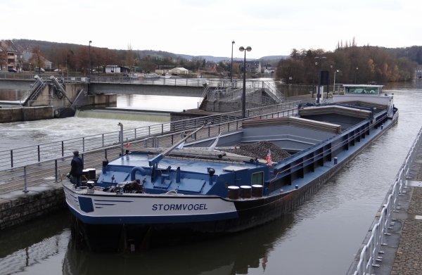 NOVATEUR (B), WENDY-CHANTAL (NL), STORMVOGEL (NL), parmi les bateaux de ce 27 novembre 2012.